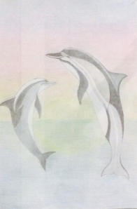 Alexis Meriwether Dolphins