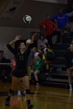 Senior Mikaila Humphrey serves the ball.